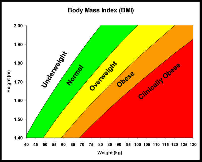 Fact: A different BMI for each ethnic group needed